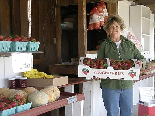 Award-winning strawberry jam recipe from Eastern North Carolina Big Mill Bed and Breakfast is a guest favorite