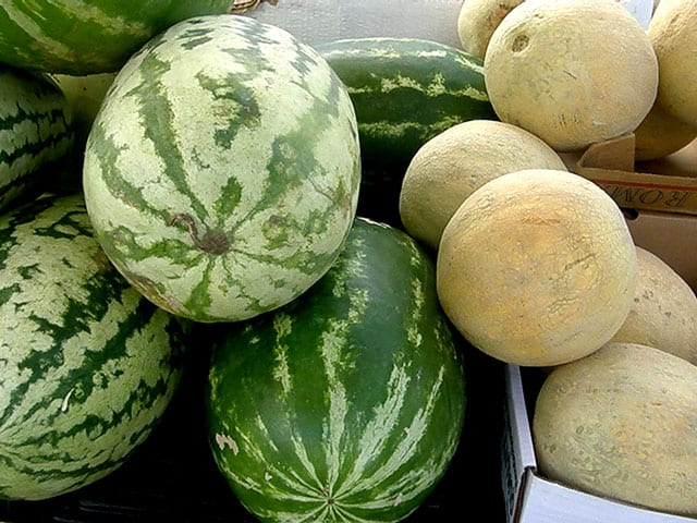 Rocky Hock watermelons Served at Big Mill BB near Greenville NC @BibMill | http://chloesblog.bigmill.com/fruit-stands-and-pick-up-trucks